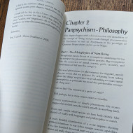 The Apophenion: A Chaos Magick Paradigm