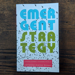 Emergent Strategy: Shaping Change, Changing Worlds