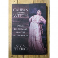 Caliban and the Witch: Women, the Body and Primitive Accumulation