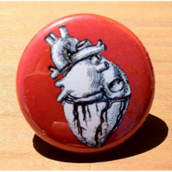 Anatomical Heart HT-02