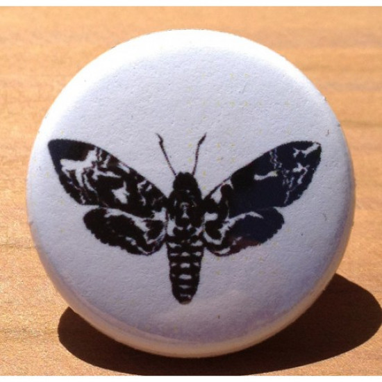 Moth AN-02