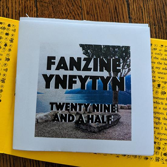 Fanzine Ynfytyn 29 + 29.5 Italy (2 zine set)