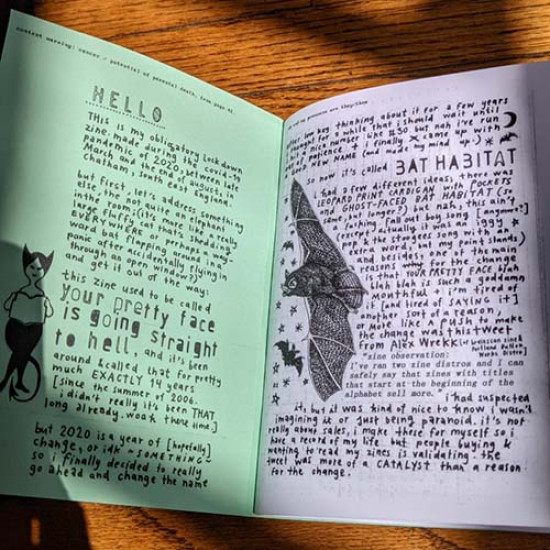 Bat Habitat #28 (formerly Your Pretty Face Is Going Straight to Helll zine)