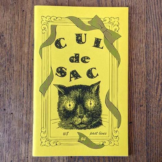 Cul-de-sac #8 Past Lives zine